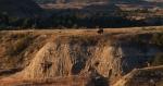 Bison in landscape Teddy Roosevelt NP NDIMG_0008746