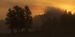 Fire Mist Dawn Yellowstone N.P. WY IMG_0068118copy