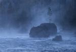 Firehole River dawn Yellowstone N.P. WY IMG_0068090copy