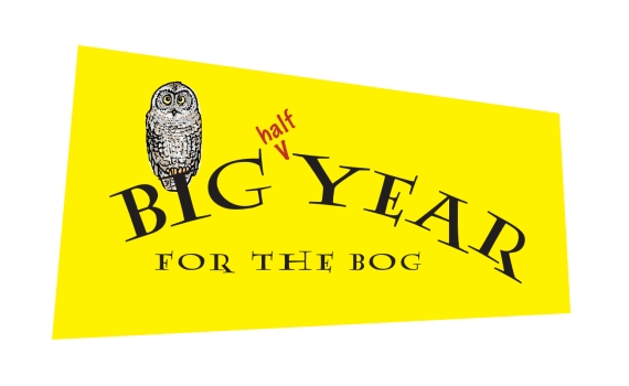 Big half year for the bog logo