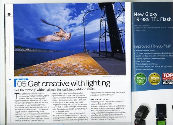 Digital Camera gull orange gel spread page SMALL