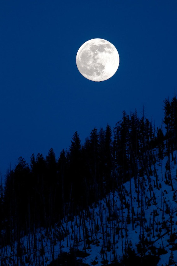 Moonrise full at Silver Gate Yellowstone National Park WY IMG_8216