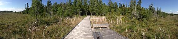 Brokenhead Bog Boardwalk Selkirk Manitoba IMG_0177