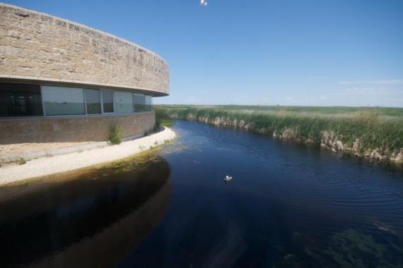 Oak Hammock Marsh Manitoba IMG_0299