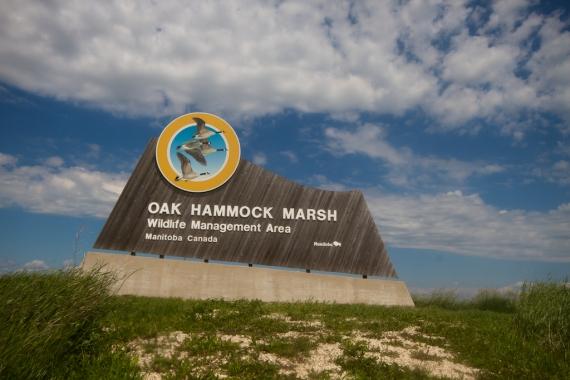 sign Oak Hammock Marsh Manitoba IMG_0340