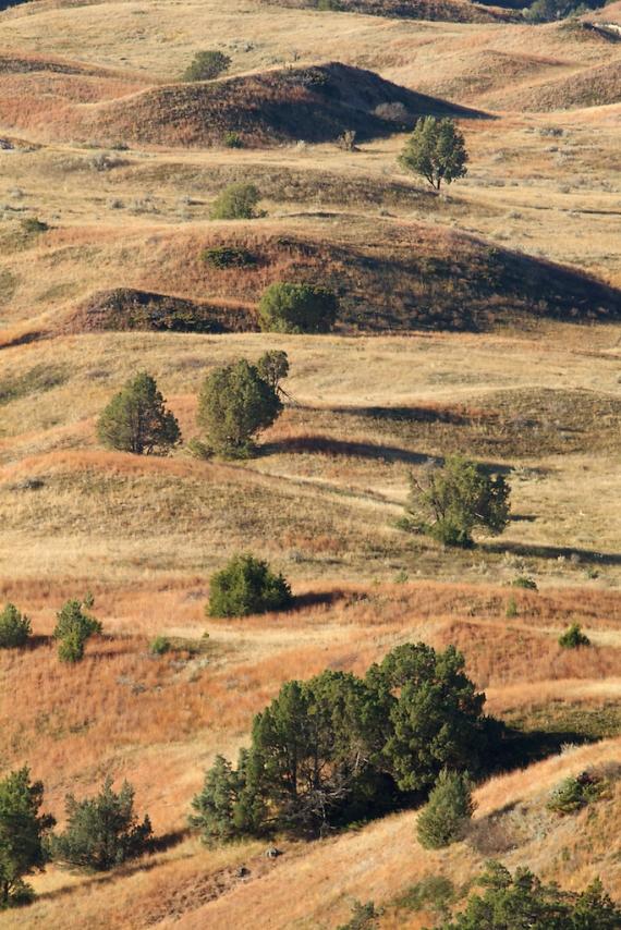 Landscape Teddy Roosevelt NP IMG_5093