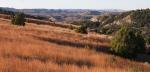 Landscape Roosevelt National Park NDIMG_6127
