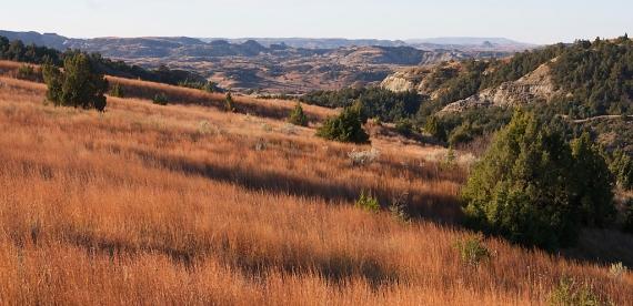 Landscape Roosevelt National Park ND IMG_6127