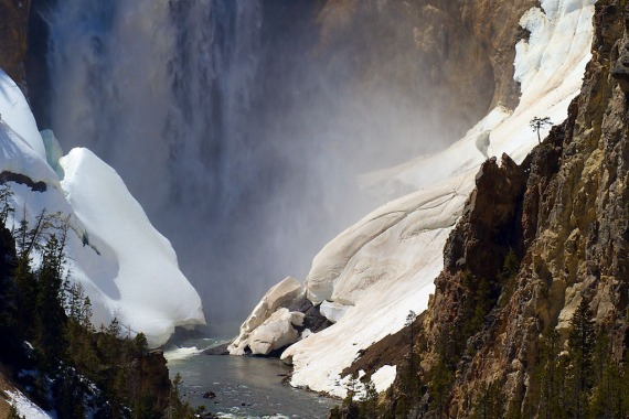 falls Yellowstone River Grand Canyon Yellowstone National Park WY IMG_4622 (1)