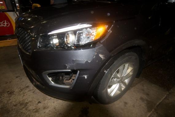 rental car hit deer ND IMG_3698 (1)