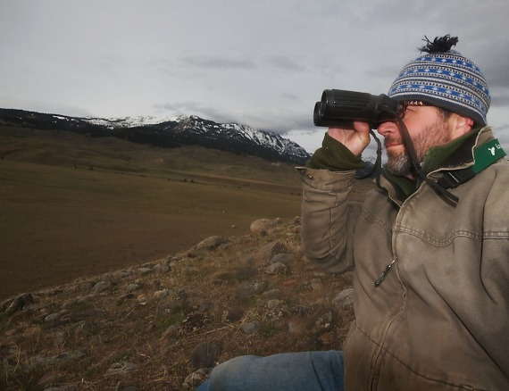 Sparky Yellowstone IMG_5387 (1)