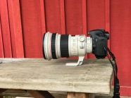 Canon 200mm f2 lens Yellowstone National Park WY Sparky Stensaas-2-4