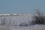 Glacial Ridge National Wildlife Refuge Polk County MNIMG_0241